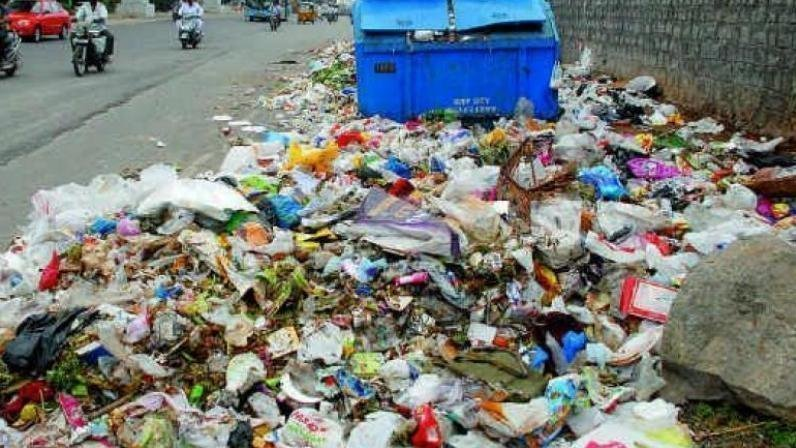 Peion India Can Beat Plastic Bag Pollution By 2021