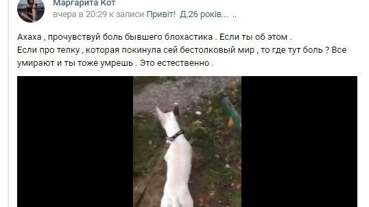 Скандал у соцмережах: харків'яни вимагають покарати людей, які зняли на відео вбивство кота (ВІДЕО 18+) - фото 1