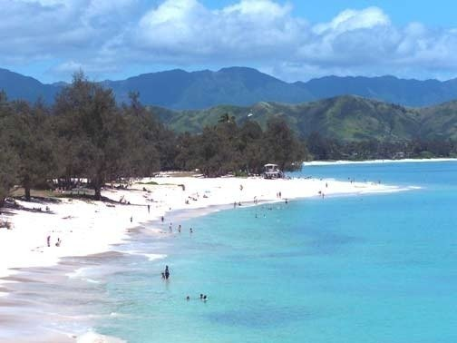 Petition Stop All Commercial Uses At Kailua Beach Park Not