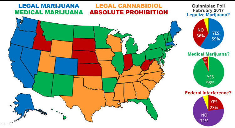 the issue of legalization of marijuana in the united states of america Debate should marijuana be legalized in the united states issue: marijuana, so while it is legal in two states.