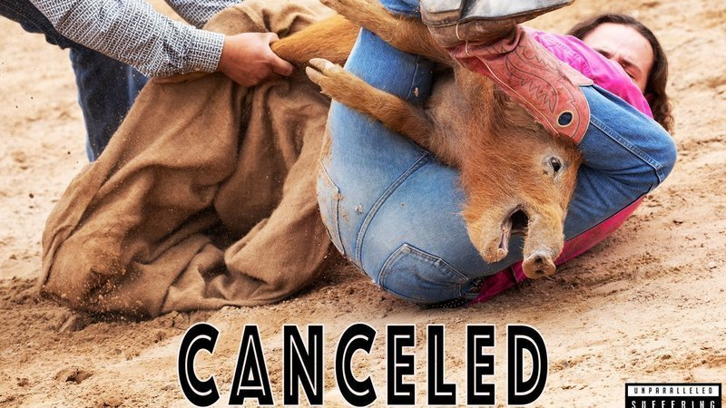 Petition update · Victory! Wild Hog Explosion Canceled