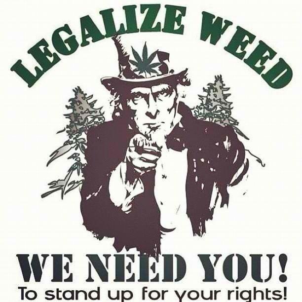 should the federal government legalize marijuana How should the federal government deal with state laws that legalize marijuana use dec 10, 2012 by jeremy quattlebaum, student voices staff writer.