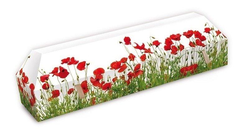 cercueil ecologique