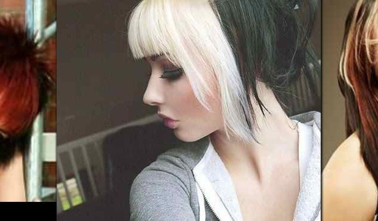 Groovy Petition Allow Students To Wear Natural Two Toned Hair Color Schematic Wiring Diagrams Amerangerunnerswayorg