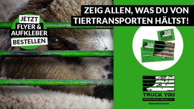 Petition Update Aufkleber Und Flyer Gegen Tiertransporte