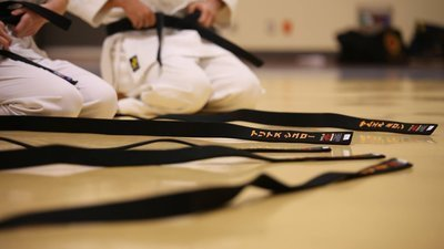 Petition · City of Costa Mesa: Support your local Martial Arts