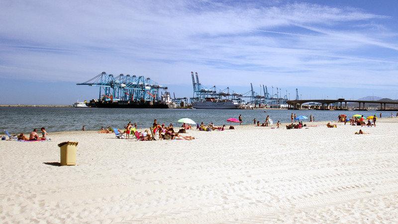 Petición · Ayuntamiento de Algeciras: Queremos playas para perros en ...
