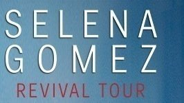 Petition slotix lower selena gomez vip prices change lower selena gomez vip prices m4hsunfo