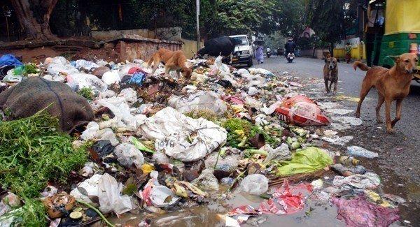 plastic pollution in india pdf