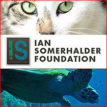 Petition · Be a warrior and support the ISF Foundation by