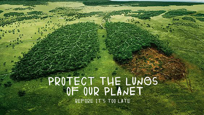 Petition · Protect the forests, the only lungs of our Planet, by removing  the incentives for arson. · Change.org