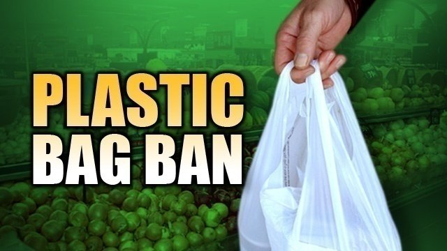 banning plastic bag Northfield — the atlantic county board of chosen freeholders is considering banning plastic bags at county parks and plans to encourage municipalities to adopt measures aimed at curbing disposable bag.