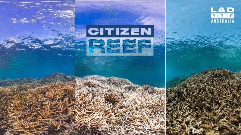 Petition Make The Great Barrier Reef An Australian Citizen