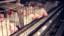 Fran's Café se compromete contra a tortura de galinhas
