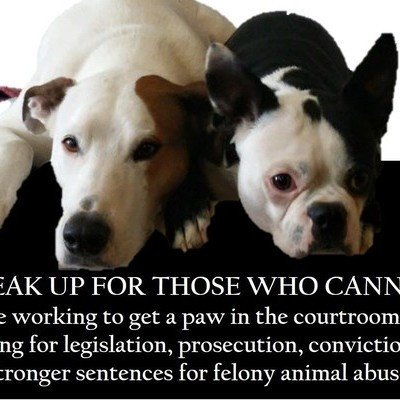 Petition · Justice for Yakima Boxer Left on a Chain to Die