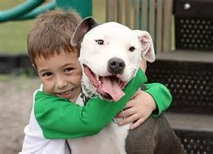 missouri dog laws