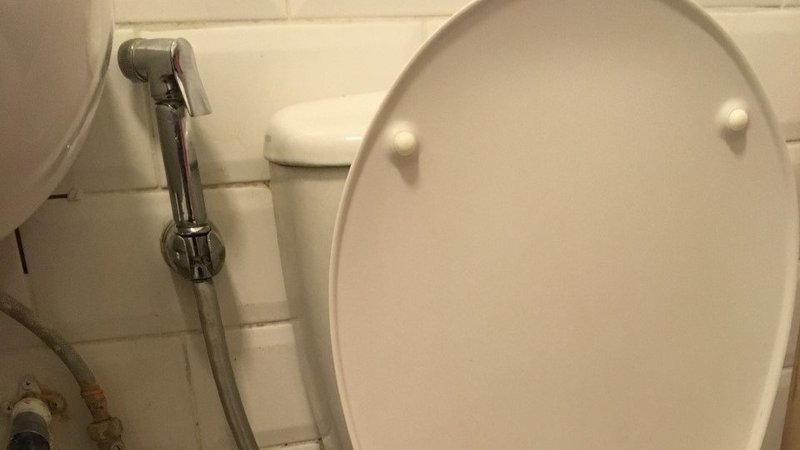 Excellent Petition Provide Self Washing Facility In The Toilets Pdpeps Interior Chair Design Pdpepsorg