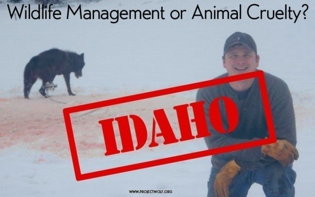 Petition idaho department of fish and game we demand for Idaho dept of fish and game