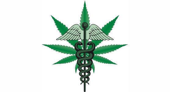 Медицинской марихуаной через что перетирать коноплю
