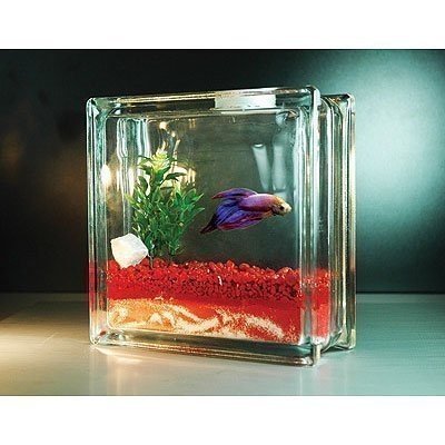 Petition petsmart stop selling fish tanks that hold for How much are fish at petsmart