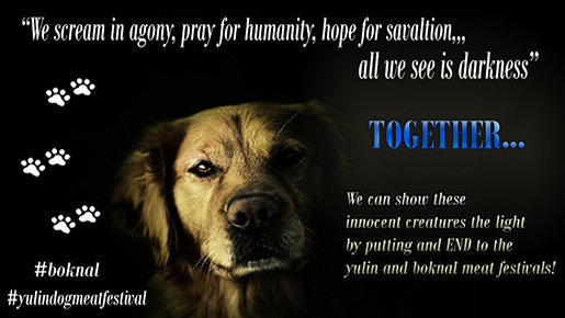 Yulin Dog Meat Festival 2020.Petition Update Stop Yulin 2020 Change Org