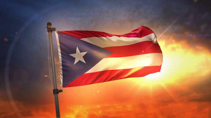 Image result for OEA + PUERTO RICO + FLAG