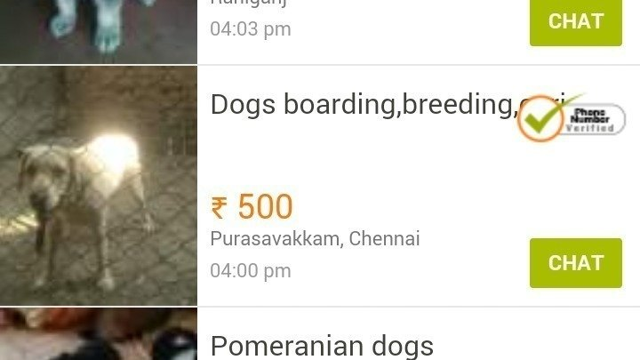 Petition Peta Stop Selling Animals On Olx Change Org