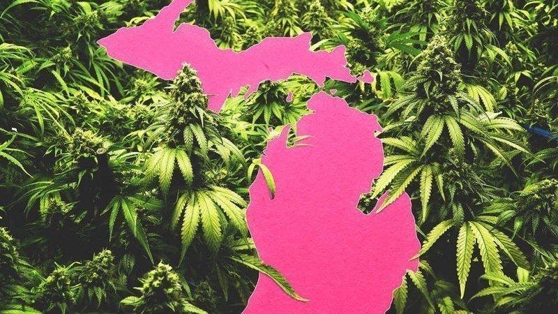 where to buy marijuana in michigan