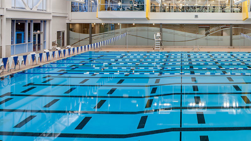 Petition · Build a competitive swimming pool on campus ...