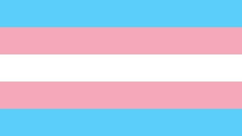 Petition · Unicode: Add Transgender Pride Flag Emoji · Change org