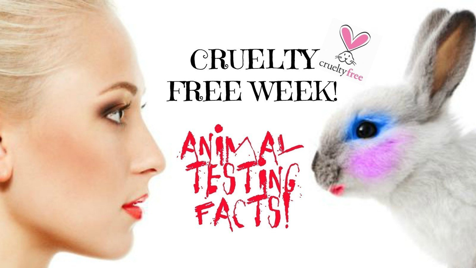 an analysi of the topic of animal testing Animal experiments are cruel, unreliable, and even dangerous  drug will be  safe for humans provides little statistically useful insight, our recent analysis  found.