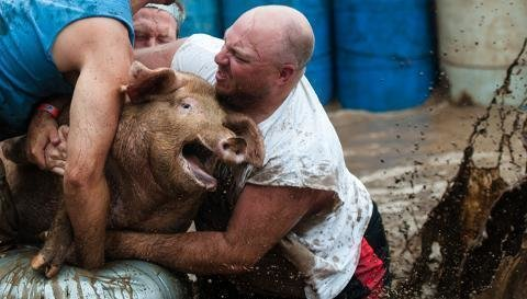 Petition · Grant County 4 H Fair, Marion Animal Care and