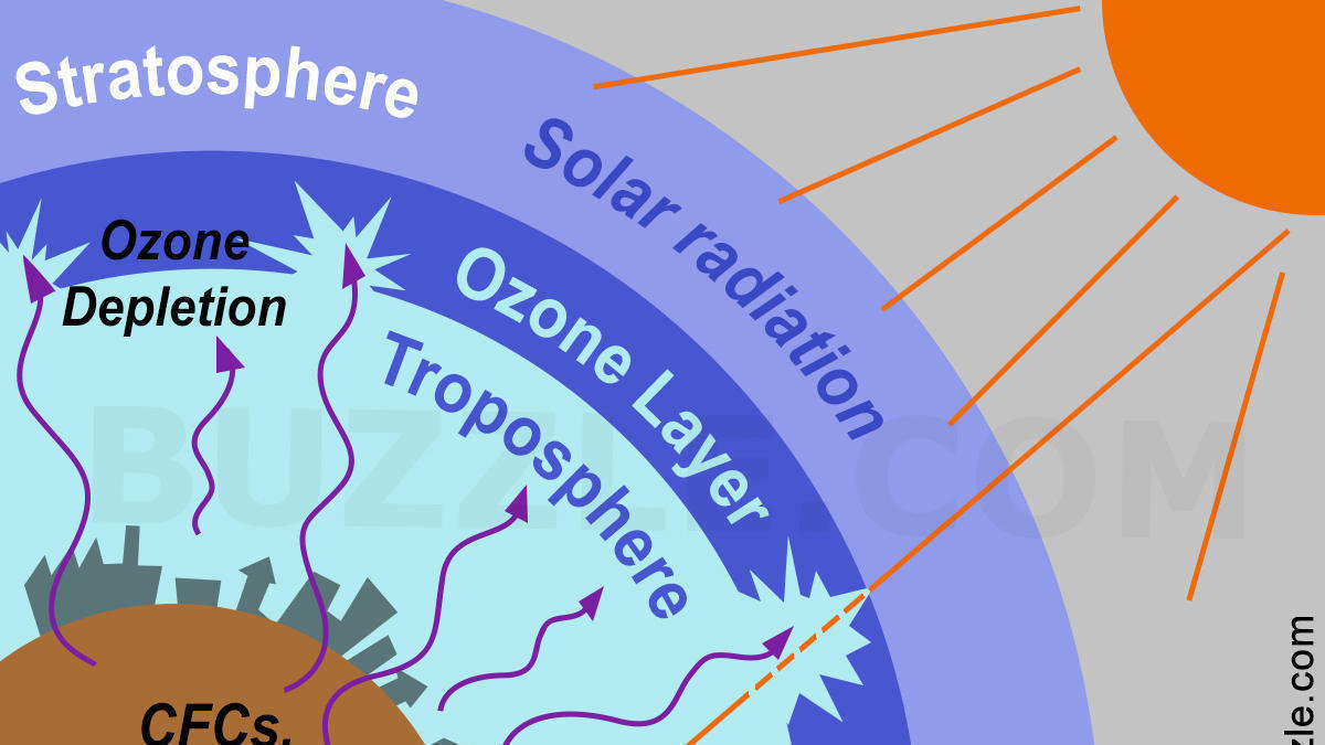 the ozone depletion In a phenomenon that could contribute to climate change, the hole in the antarctic ozone layer has changed the way that waters in.