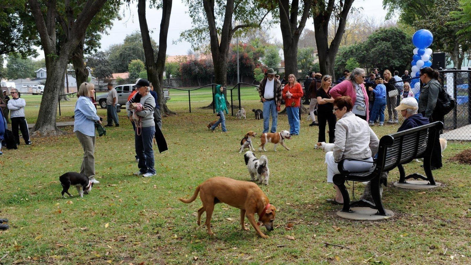 Dog Park Phoenixville Pa