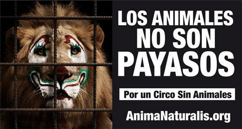 Poster en contra de animales en los circos