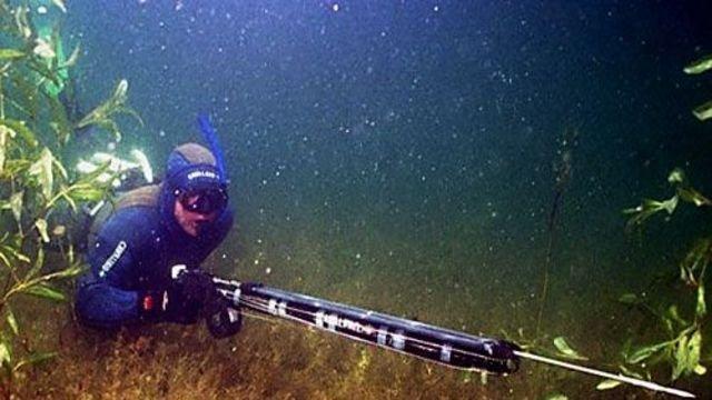 ружье с целью подводной рыбалки сколько стоит стоит