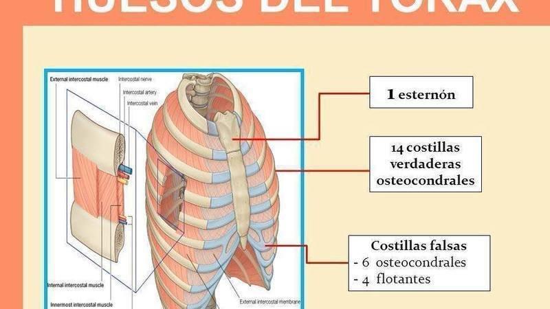 sindrome de tietze sintomas y tratamientos