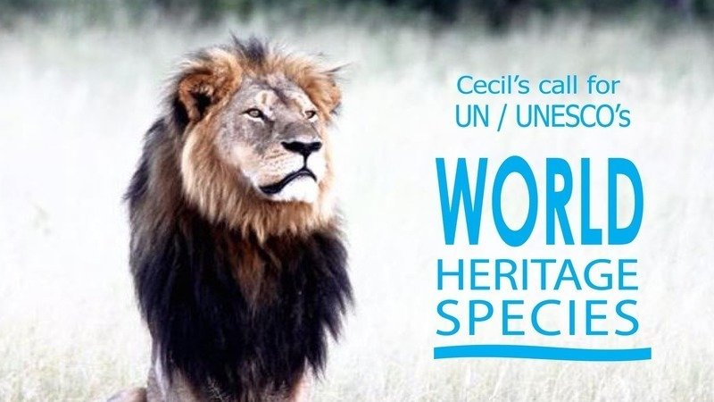 Petition · Join Cecil the Lion in his call to UN/UNESCO to
