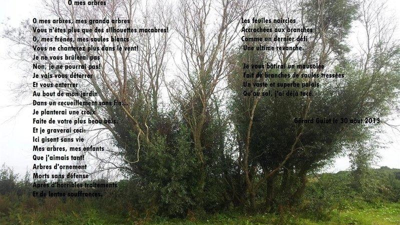 Pétition · Stop aux pulvérisations en bordure des jardins et ...
