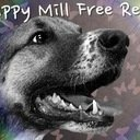 Puppy Mill Free Reno