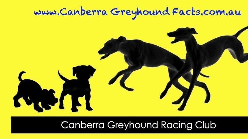 Keep Greyhound Racing In The Act And