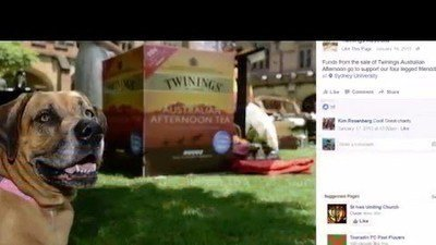 Petition · Twinings Australia: Have A Heart Twinings : Reinstate the